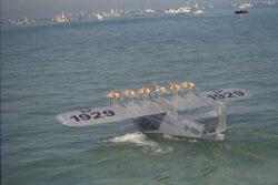 IBAS-98-DO-X-1016